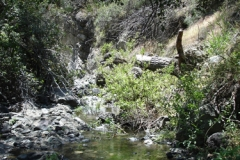 2006-sedgwick-upper-Figueroa-Creek-1
