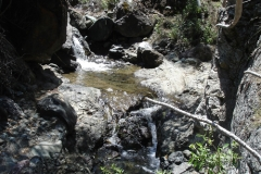 2006-sedgwick-upper-Figueroa-Creek-2